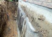 drainage_gal4_4.JPG