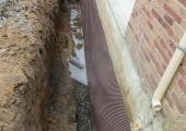 drainage_gal4_5.JPG