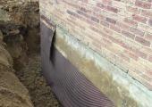 drainage_gal4_7.JPG